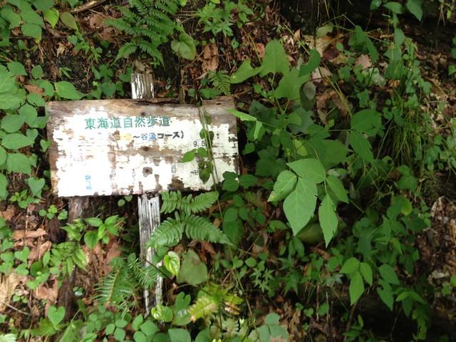 横蔵寺 東海自然歩道看板