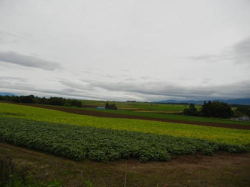 2013年北海道家族旅行_156