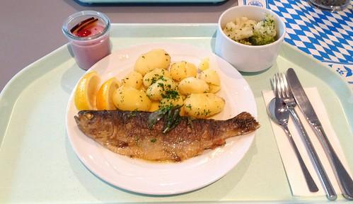 "Forelle ""Müllerin Art"" mit Salbeibutter & Salzkartoffeln / Trotu meuniere with savage butter & potatoes"