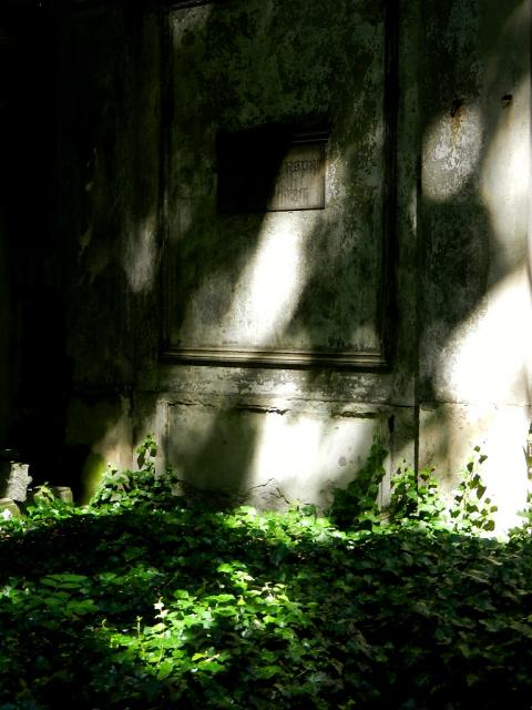 Jüdischer Friedhof Berlin_2013_58