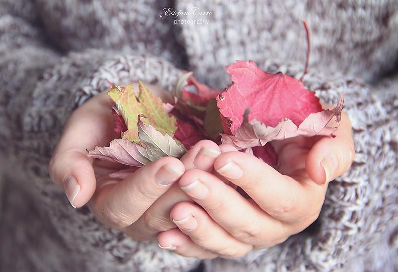 ..el otoño está en tús manos
