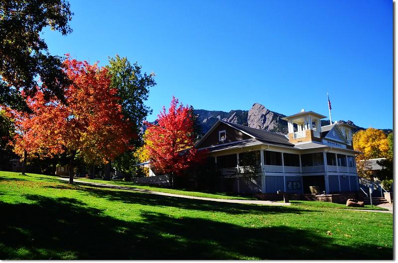 Sugar maple in Fall, Chautauqua, Boulder 9