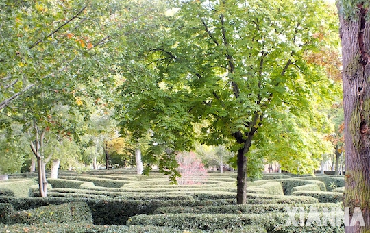Labyrinth in parque del capricho, Madrid