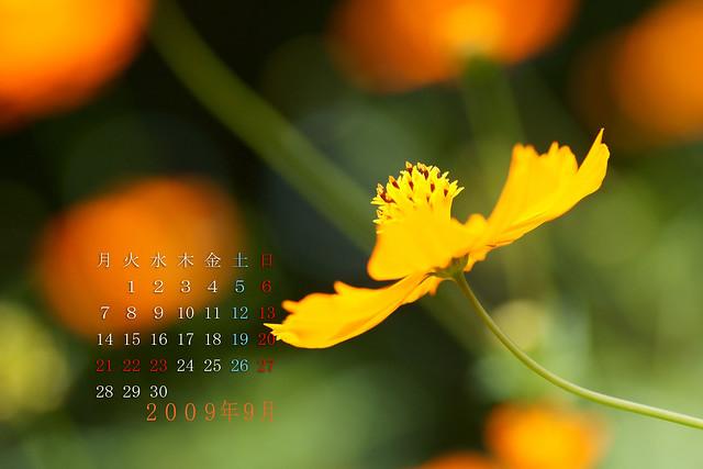 写真_2009年9月カレンダー