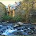 El rio Genil by jose luis naussa (+3-4 millones)