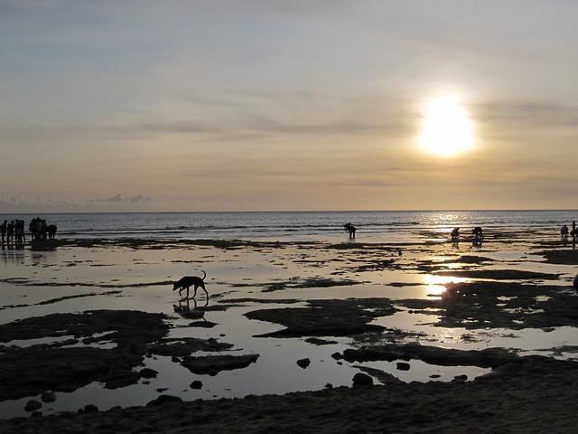 20110618 威尼斯沙灘, 屏東琉球