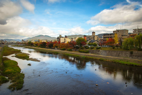 autumn japan river kyoto momiji kioto kamogawa japón prefecturadekioto