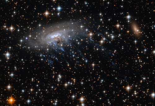 New Hubble image of spiral galaxy ESO 137-001