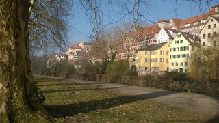 Tübingen is purdee