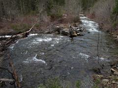 Stafford Creek