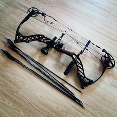 glasses(0.0), rein(0.0), halter(0.0), bridle(0.0), firearm(0.0), crossbow(0.0), weapon(1.0), bow(1.0), cold weapon(1.0), bow and arrow(1.0),