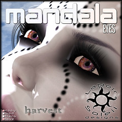 LNS_MANDALA_EYES_HARVEST_VA