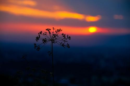 sunset sky sun silhouette yerevan