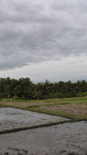 Bali-3-060