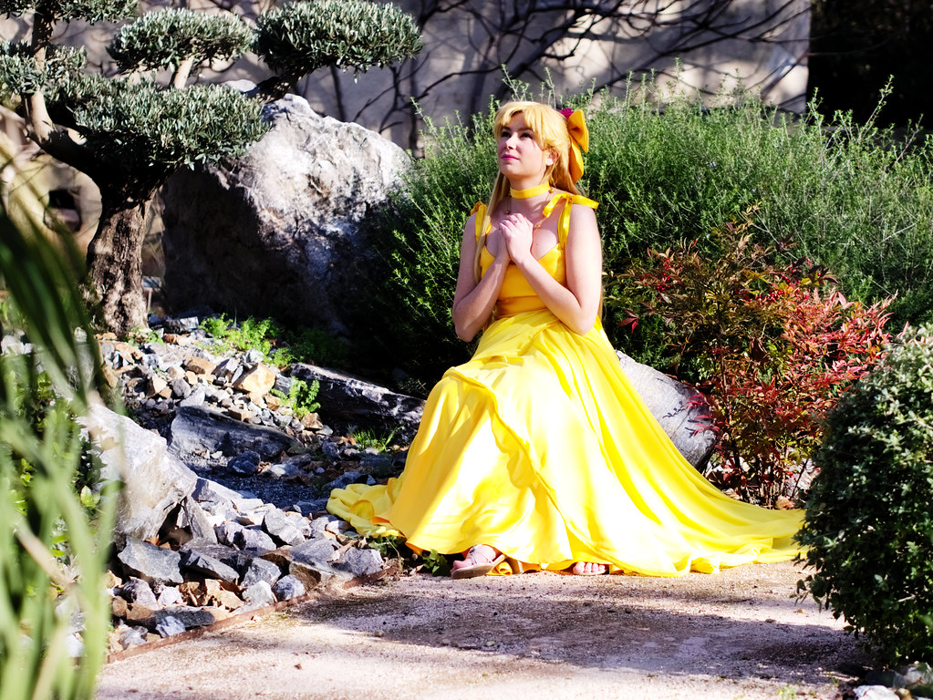 related image - Shooting Princess Venus - Parc de Baudouvin - La Valette du Var - 2015-01-18- P1980936