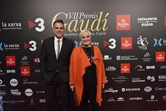 Catifa vermella VII Premis Gaudí (86)
