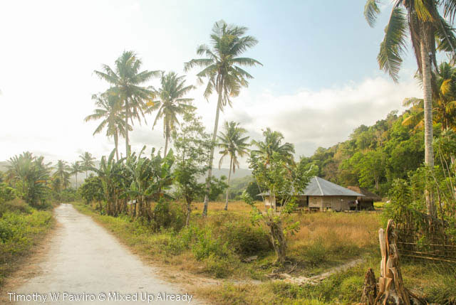 Indonesia - Sumba - Tarimbang - 12b - The first house to be seen