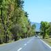 Carretera Querétaro a Pátzcuaro - Michoacán México 150207 110616 01046 HX50V por Lucy Nieto