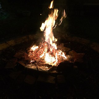 Burn baby burn. One way to get rid of an old Xmas tree. Last bonfire in the Bay Area