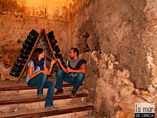 Ruta del Vino en Valencia / Wine tour in Valencia