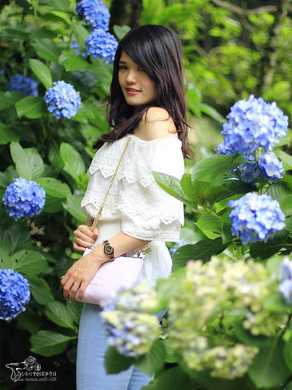 繡球花 (27)