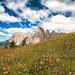 Alta Badia #2 Italia by Mauro Tonti