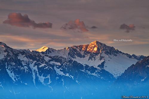montagne alba adamello stampa valcamonica vione