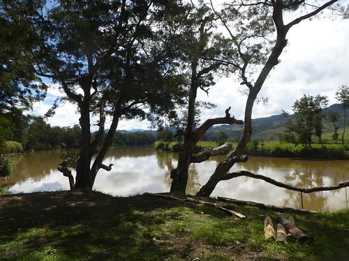 Papou13-Wamena sud-Sugokmo (114)