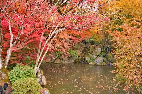 【写真】2012 紅葉 : 醍醐寺/2020-08-07/IMGP6863