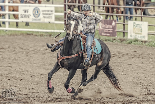 Gooseberry Lake : 4-H Rodeo 2013 : Tori : 0-60