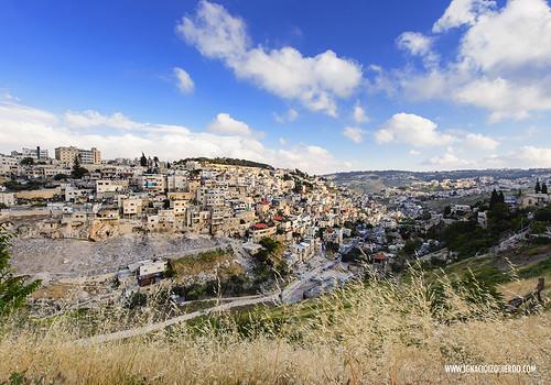 Jerusalem 24