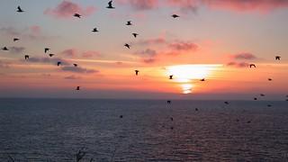 Haffkrug, Ostsee, Sonnenuntergang