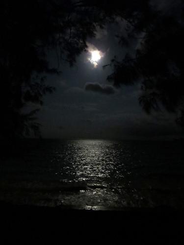 Hawaii - August 2013 267