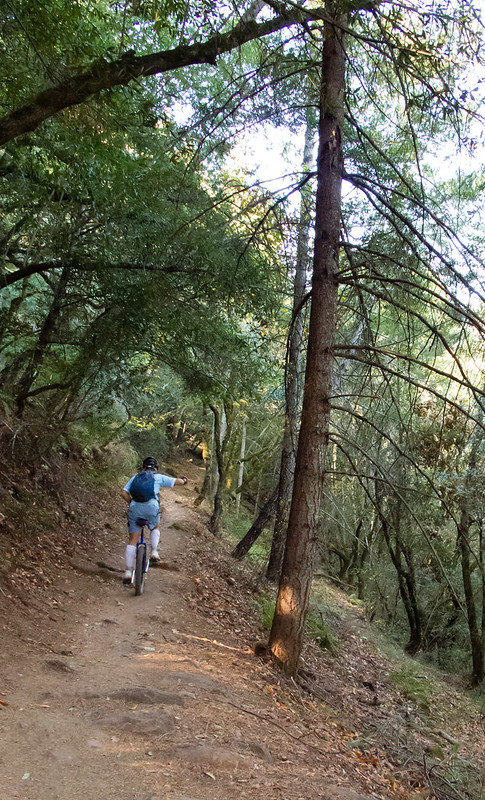 North Burma trail