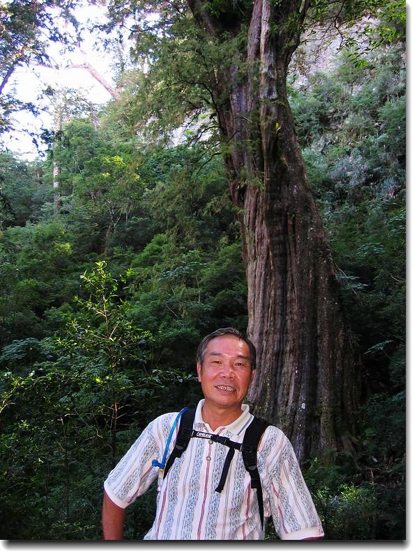 紅檜神木(elev. 2471 m, 攝於2005.10.16) 2