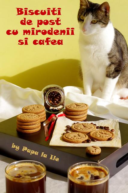 Biscuiti de post cu mirodenii si cafea (14)