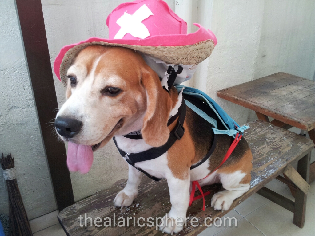 Dog-Beagle-Costume-Tony-Chopper-One-Piece-final