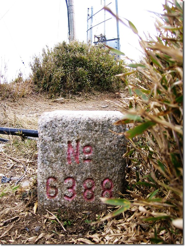 合歡主山三等三角點(#6388 Elev.3416 m)