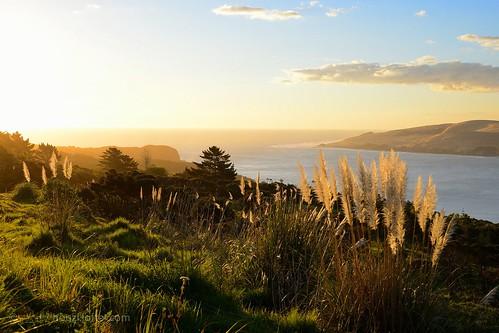 风景 日落 色彩 新西兰