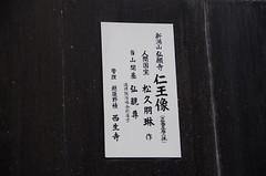 IMGP6010