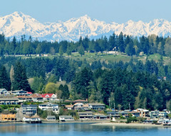 Gig Harbor from the Narrows