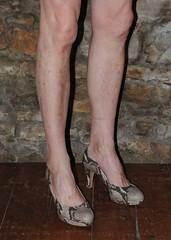 outdoor shoe(0.0), arm(0.0), barefoot(0.0), human body(0.0), thigh(0.0), human leg(1.0), footwear(1.0), limb(1.0), leg(1.0),