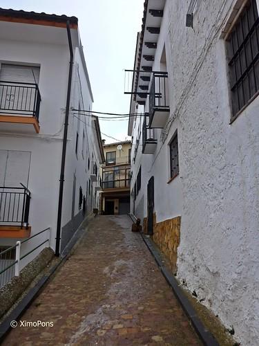 Nº 68 Torrijas  P1060680