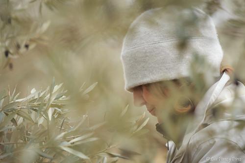 Retrato entre olivos y con frío.