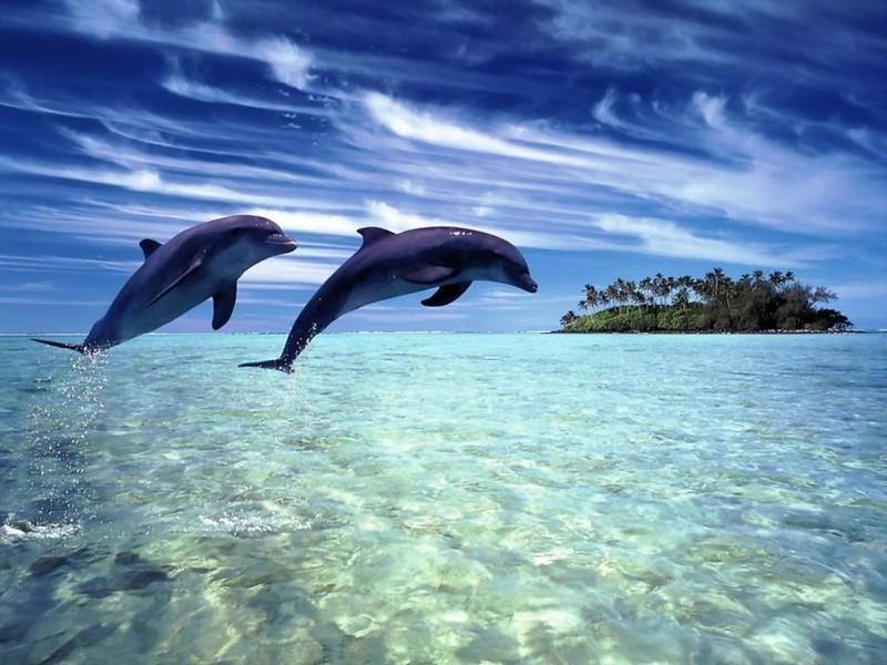destinos-caribe-y-c-america