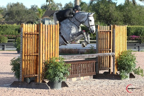Visse Wedell and Bona Fide Claim Triple Crown Adult Amateur Hunter 36-50 Section A Championship at FTI WEF