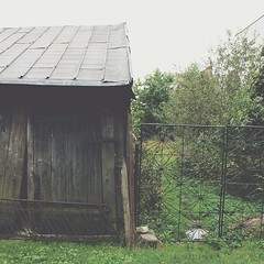This old barn has seen better days, but it's also been there for a couple of generations.... Still stands unchanged in my grandma's backyard, hiding old secrets and a vegetable garden behind it....