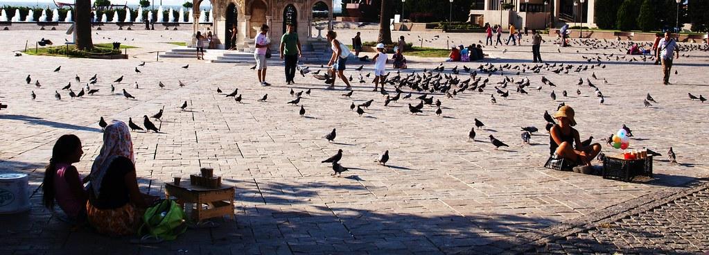 Seed sellers - Izmir