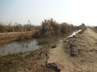 A choked drain at Jamuana village