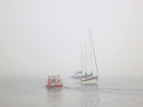 Maritime mist